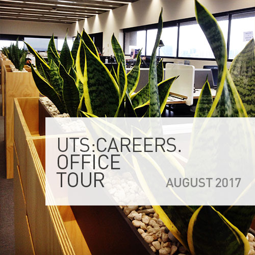 UTS Careers office tour image, green leafy plant in pot at end of the office pod. Office Tour date to be confirmed, will be in August 2017.
