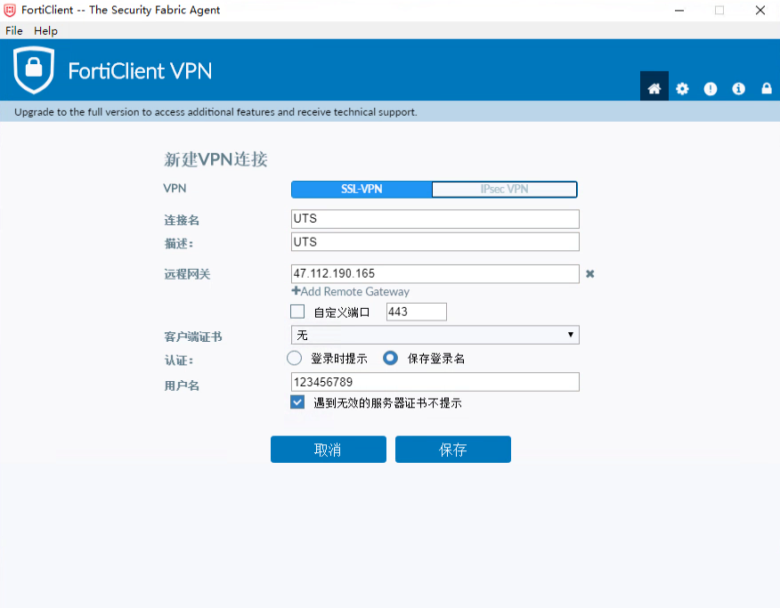 VPN setting in Chinese