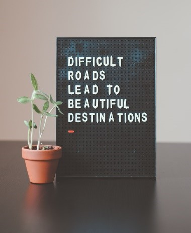 small indoor plant next to a sign that says 'difficult roads lead to beautiful destinations'
