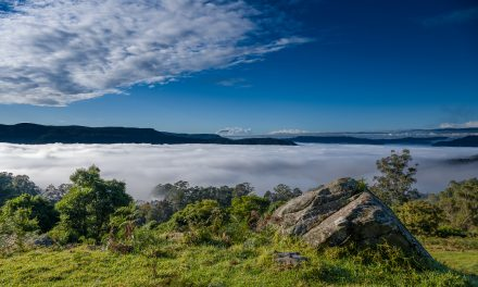 Red to black to green: a fresh challenge as colour returns to Kangaroo Valley
