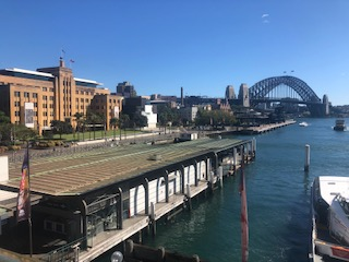 Sydney Harbour- potential ground for oyster reefs