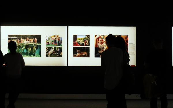 World Press Photo Exhibition inspires viewers in unprecedented times