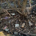 Community riverkeepers fight rising tide of rubbish