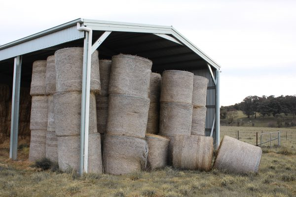 Hay bail shed stocked with feed for cattle