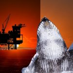 Oceans the next big battlefield as NSW awaits drilling decision