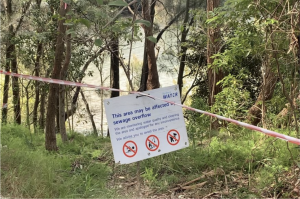 Sign at Georges River warning passerby's of sewage overflow